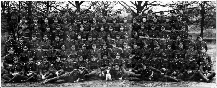 """18th Canadian Battalion """"D"""" Coy., West Ont. Regt. May 1919"""