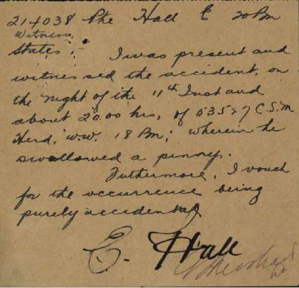 witness-statement-by-pte-hall-reg-no-214038